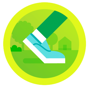 Fitbit Daily Steps Badges